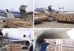 货物运输保险合同