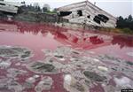 环境污染事故